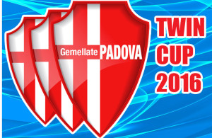 twincup